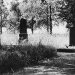 Impressionen vom Friedhof