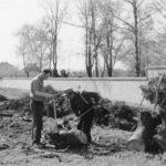 Der Friedhof muss weichen, die Bäume wurden für die Straße gefällt.